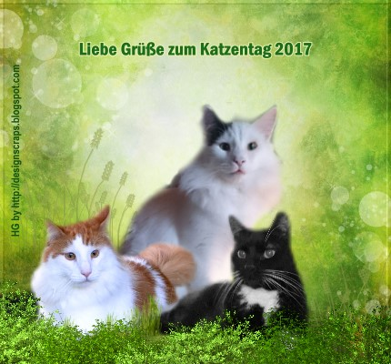 An den Beitrag angehängtes Bild: http://catsside.de/mitnehmsel/catsside_katzentag2017.jpg