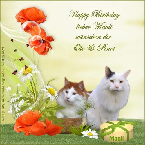 An den Beitrag angehängtes Bild: http://catsside.de/mitnehmsel/mauli_burzeltag.jpg